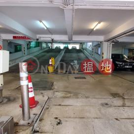 Tai Koo Shing carpark phase 8