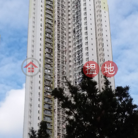 Choi Sin House, Choi Fook Estate|彩善樓 彩福邨
