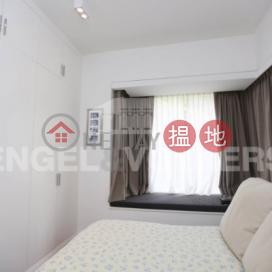 2 Bedroom Flat for Rent in Wan Chai Wan Chai DistrictStar Crest(Star Crest)Rental Listings (EVHK36946)_0