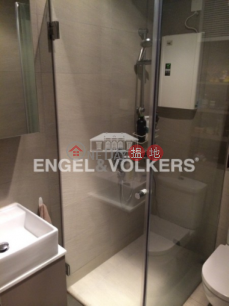 1 Bed Flat for Sale in Mid Levels West, 3 Chico Terrace 芝古臺3號 Sales Listings   Western District (EVHK45403)