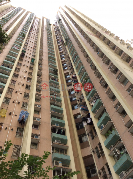 天逸邨 逸海樓 (Yat Hoi House - Tin Yat Estate) 天水圍 搵地(OneDay)(3)