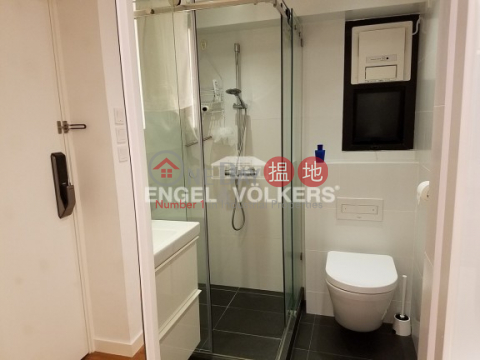 Fully Furnished 1 Bedroom in Caine Tower|Central DistrictCaine Tower(Caine Tower)Rental Listings (MIDLE-EVHK39139)_0