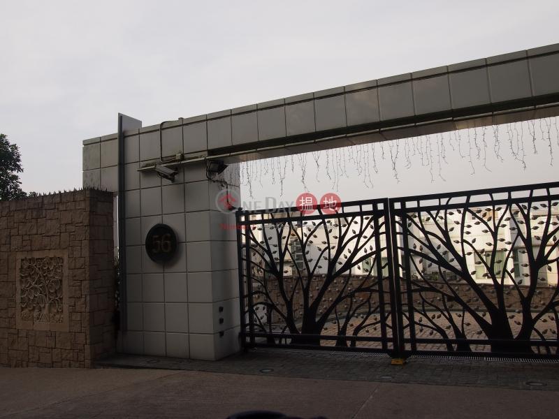 種植道56號 (No.56 Plantation Road) 山頂|搵地(OneDay)(2)