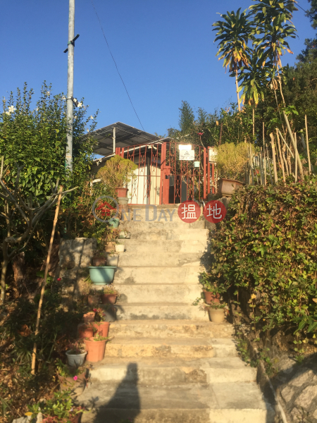 山頂村村屋 (Shan Ting Tsuen Village House) 坪洲|搵地(OneDay)(5)