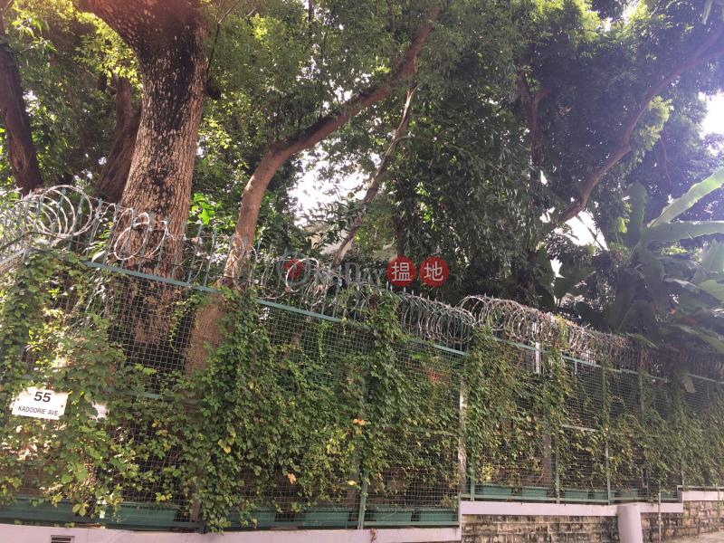 55 Kadoorie Avenue (55 Kadoorie Avenue) Mong Kok|搵地(OneDay)(1)