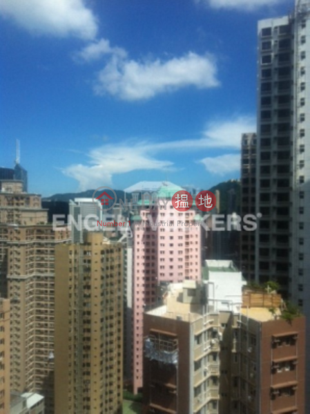 3 Bedroom Family Flat for Sale in Central Mid Levels | No 31 Robinson Road 羅便臣道31號 Sales Listings