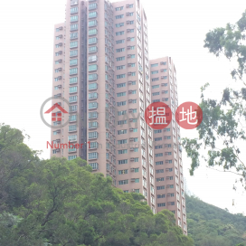 Block 1 Greenknoll Court|嘉翠園 1座