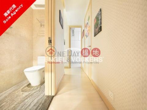 高層複式公寓(duplex)in Marinella深灣9號|深灣 1座(Marinella Tower 1)出售樓盤 (MIDLE-9318622730)_0