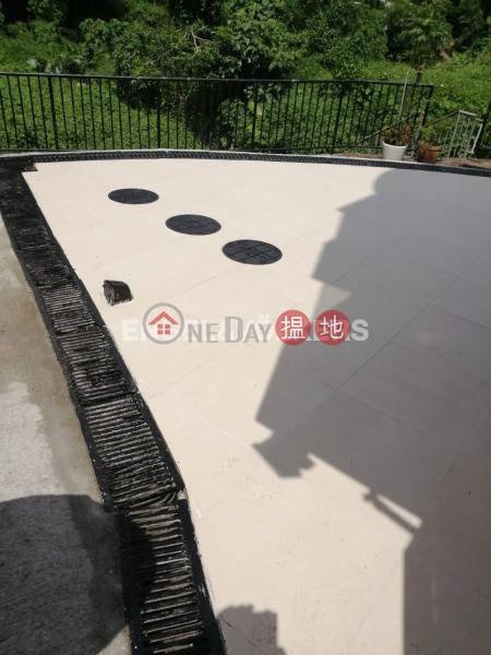 清水灣兩房一廳筍盤出售|住宅單位|檳榔灣1A號(No. 1A Pan Long Wan)出售樓盤 (EVHK42775)