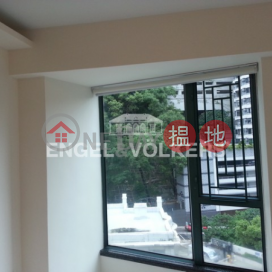 3 Bedroom Family Flat for Rent in Mid Levels West|80 Robinson Road(80 Robinson Road)Rental Listings (EVHK27383)_0