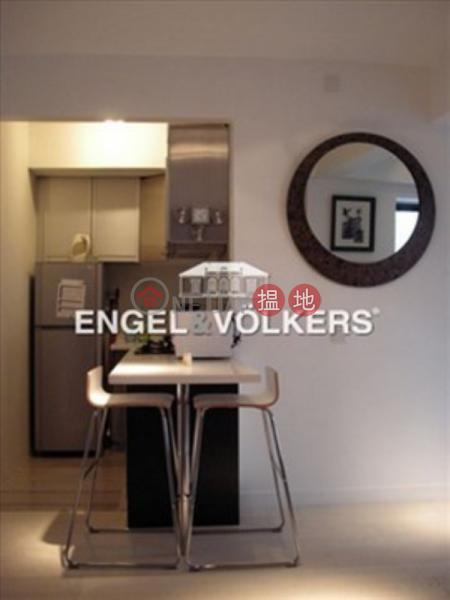 蘇豪區開放式筍盤出售|住宅單位|豪景臺(Rich View Terrace)出售樓盤 (EVHK14575)