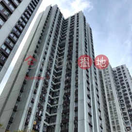 (T-06) Tung Shan Mansion Kao Shan Terrace Taikoo Shing|東山閣 (6座)