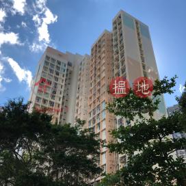 翠樂邨 翠祿樓,柴灣, 香港島
