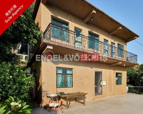 愉景灣三房兩廳筍盤出售|住宅單位|24-27 洪聖爺(24-27 Hung Shing Ye)出售樓盤 (EVHK93379)_0