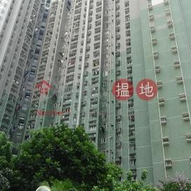 嘉隆苑C座嘉俊閣,薄扶林, 香港島