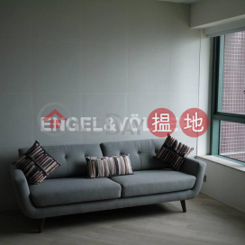 Studio Flat for Rent in Mid Levels West|Western District80 Robinson Road(80 Robinson Road)Rental Listings (EVHK85770)_0
