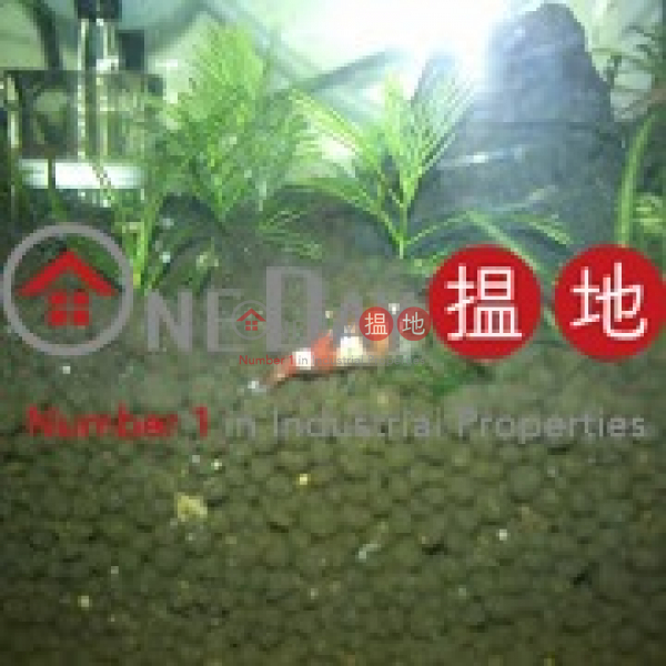 安興|粉嶺安興工貿中心(On Hing Industrial Centre)出租樓盤 (cindy-04435)