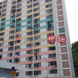 Pak Tin Estate Block 13|白田邨第十三座