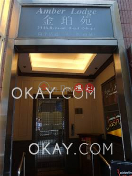 Lovely 1 bedroom on high floor with rooftop & balcony | For Sale | Amber Lodge 金珀苑 Sales Listings