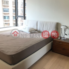 3 Bedroom Family Flat for Rent in Sai Ying Pun|The Babington(The Babington)Rental Listings (EVHK42263)_0