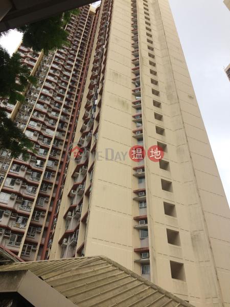 平田邨平誠樓 (Ping Shing House, Ping Tin Estate) 藍田|搵地(OneDay)(3)