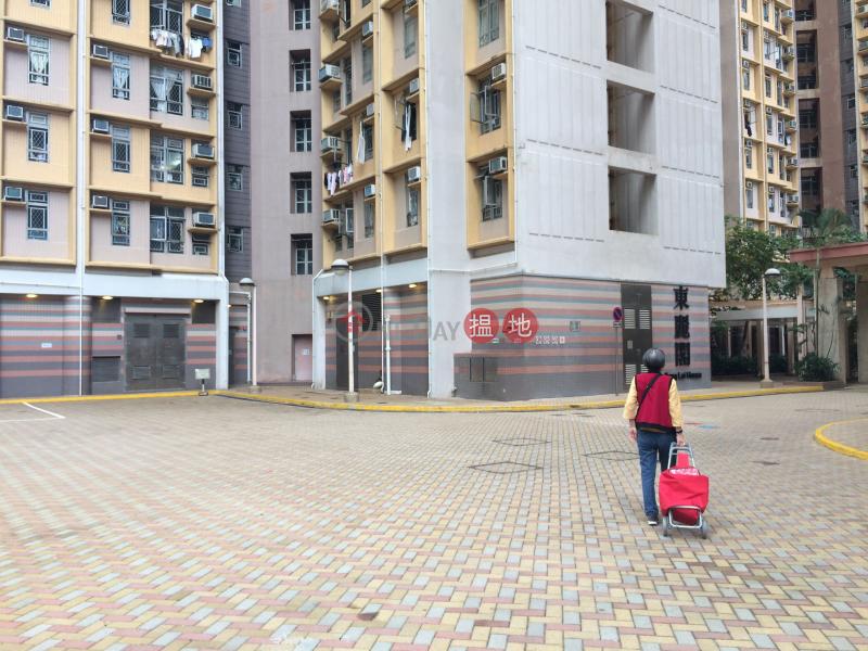 東旭苑 東麗閣 (Tung Yuk Court Tung Lai House) 筲箕灣 搵地(OneDay)(1)