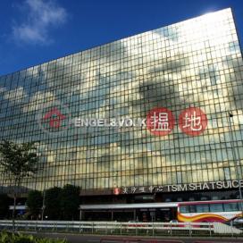 Studio Flat for Rent in Tsim Sha Tsui East