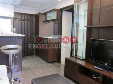 1 Bed Flat for Sale in Mid Levels - West|Western DistrictAll Fit Garden(All Fit Garden)Sales Listings (EVHK18470)_0