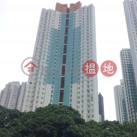 映濤閣 (D座),西灣河, 香港島