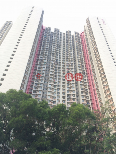 梨木樹邨 桃樹樓 (Lei Muk Shue Estate Toa Shue House) 大窩口|搵地(OneDay)(1)