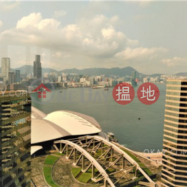 Lovely 2 bedroom on high floor with harbour views | Rental