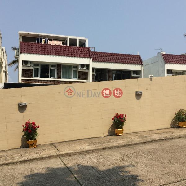 金湖別墅 D座 (House D Golden Lake Villa) 清水灣|搵地(OneDay)(1)