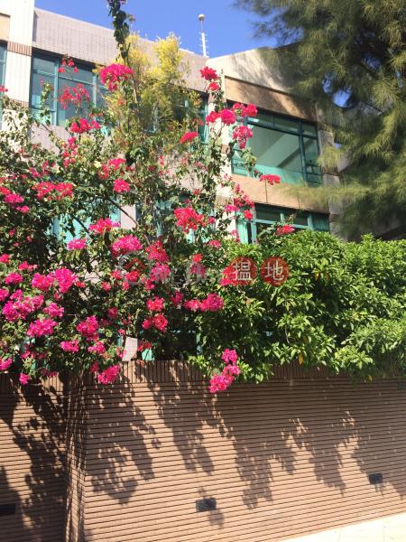 旭逸居1座 (Stanford Villa Block 1) 赤柱|搵地(OneDay)(2)