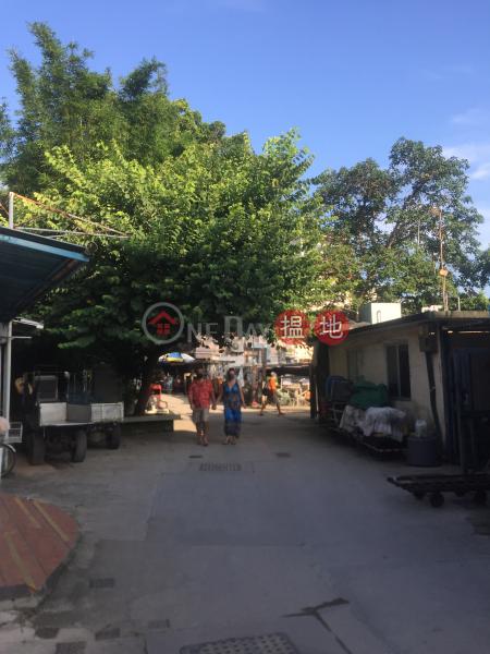 榕樹灣村屋 (Yung Shue Wan Village House) 榕樹灣|搵地(OneDay)(1)