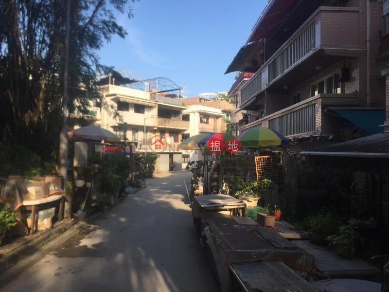 榕樹灣村屋 (Yung Shue Wan Village House) 榕樹灣|搵地(OneDay)(2)