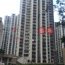 (T-19) Tang Kung Mansion On Kam Din Terrace Taikoo Shing|唐宮閣 (19座)