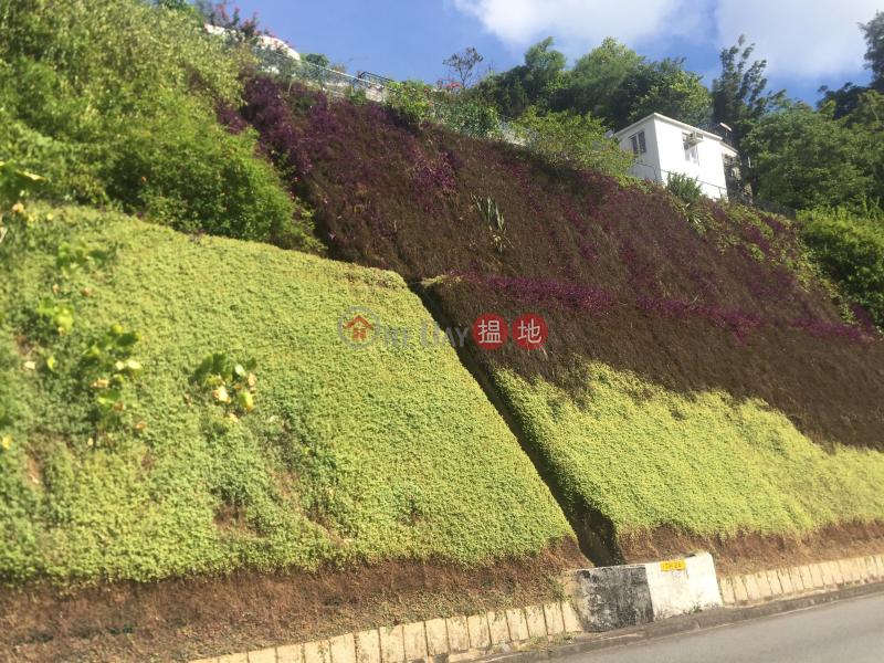11 Creasy Road (11 Creasy Road) Jardines Lookout 搵地(OneDay)(1)