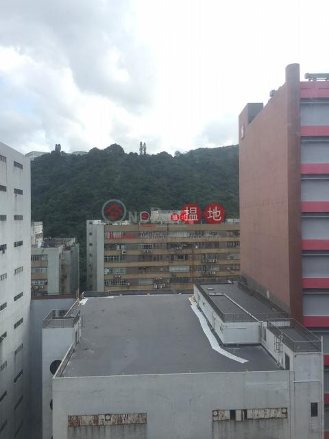 Wah Lok Industrial Centre Sha TinWah Lok Industrial Centre(Wah Lok Industrial Centre)Rental Listings (newpo-03702)_0