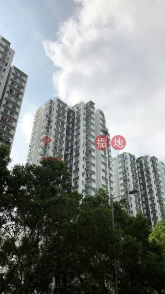 南豐新邨11座 (Nan Fung Sun Chuen Block 11) 鰂魚涌|搵地(OneDay)(4)