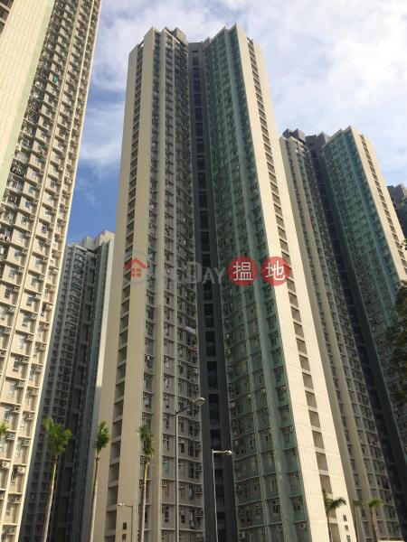 錦泰苑C座錦興閣 (Kam Tai Court Block C Kam Hing House) 馬鞍山 搵地(OneDay)(1)