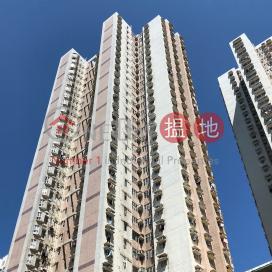 Block 4 Lok Hin Terrace|樂軒臺 4座