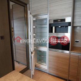 4 Bedroom Luxury Flat for Rent in Mid Levels West