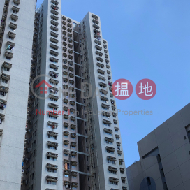 Block 1 Lok Hin Terrace|樂軒臺 1座