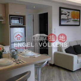 2 Bedroom Flat for Sale in Central Mid Levels|Carble Garden | Garble Garden(Carble Garden | Garble Garden)Sales Listings (EVHK13158)_3