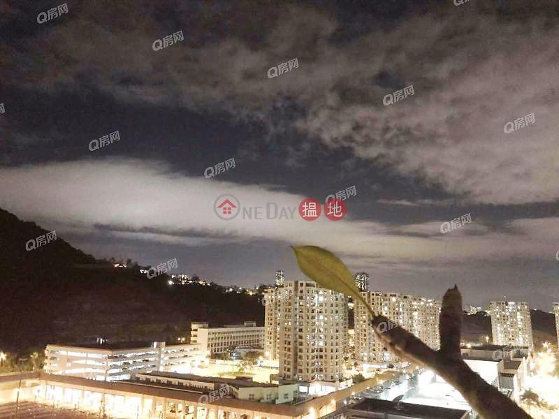 高層山景 露台兩房《杏花邨50座買賣盤》|杏花邨50座(Heng Fa Chuen Block 50)出售樓盤 (XGGD743707179)
