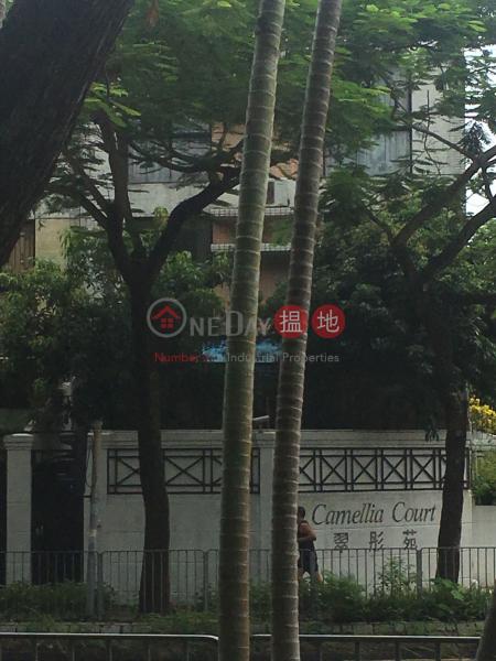 Block 10 Camellia Court (Block 10 Camellia Court) Fanling 搵地(OneDay)(3)