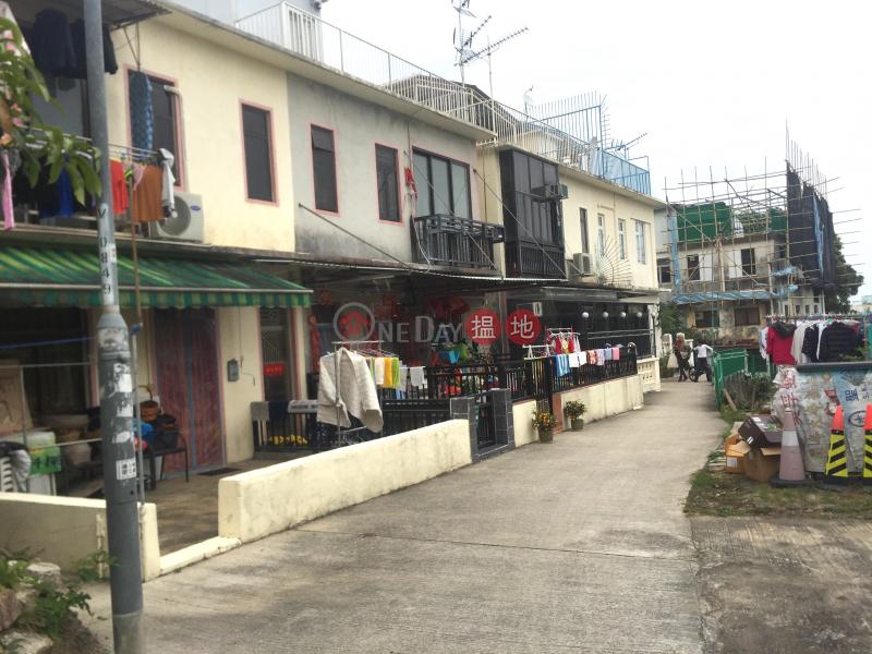 頓場下村 (Tan Cheung Ha Village) 西貢|搵地(OneDay)(4)