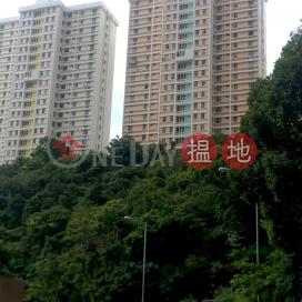 畢拉山道 111 號 E-F座,渣甸山, 香港島