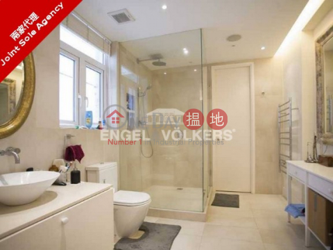 Luxurious Apartment in 49B-49C Robinson Road|49B-49C Robinson Road(49B-49C Robinson Road)Sales Listings (MIDLE-6974007036)_0