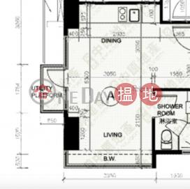 Studio Flat for Sale in Shek Tong Tsui